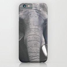 ELEPHANT PHOTOGRAPH - BLACK AND WHITE Slim Case iPhone 6s