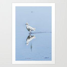 Strutting Snowy Egret from Chincoteague Art Print