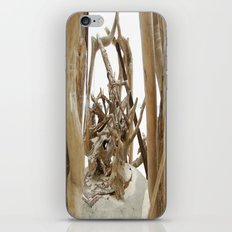 Driftwood iPhone & iPod Skin