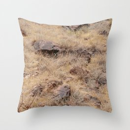 Summer foliage in Colorado Throw Pillow
