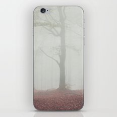 Autumn paths iPhone & iPod Skin
