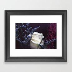 Film and Flowers Framed Art Print