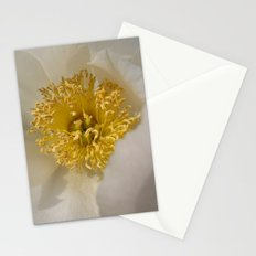 Centered - White Peony Flower Stationery Cards
