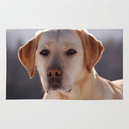 Portrait of A Golden Labrador Retriever Rug