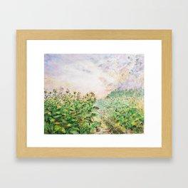 Tobacco Field Framed Art Print