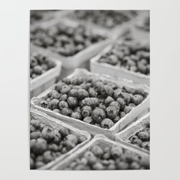 Blueberries in Black and White Poster
