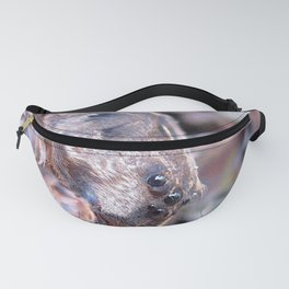 Watercolor Spider Wolf Spider, I See YOU! Fanny Pack