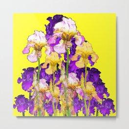 Purple Yellow & Purple Iris Flowers Metal Print
