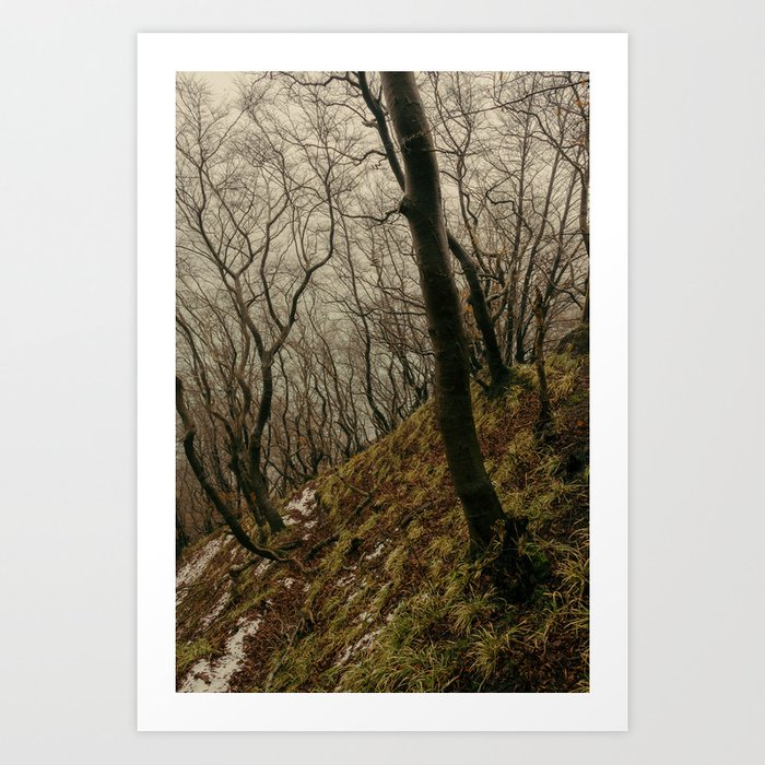 ENCHANTED FOREST / 03 Art Print