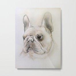 Frenchie portrait Metal Print