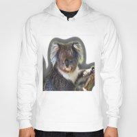 koala Hoodies featuring Koala by SwanniePhotoArt