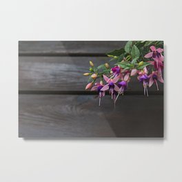 Fuchsia And Wood Metal Print