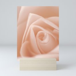 Romantic Light Pink Rose Mini Art Print