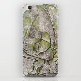 Name it  iPhone Skin