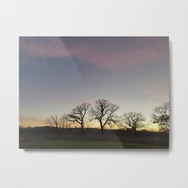 Autumn Sunset Silhouette - Pheasant Branch Conservancy Metal Print