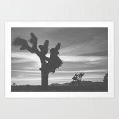 Joshua Tree Silhouettes Art Print