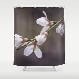 spring cherry blooms Shower Curtain
