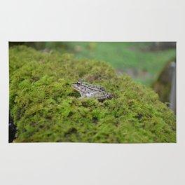 Little frog in Japan Rug