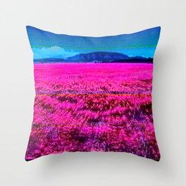 X3788-00000 (2014) Throw Pillow