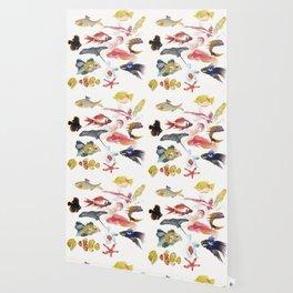 Fishy gathering Wallpaper