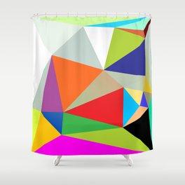 1981-1982 Shower Curtain
