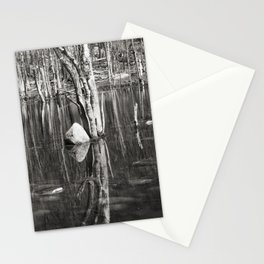 Water Mirror P2882 Stationery Cards