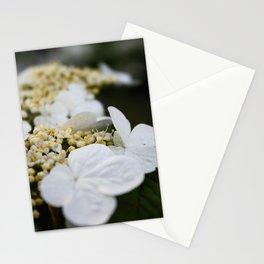 Arboretum 1 Stationery Cards