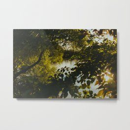 Over the River & Through the Trees Metal Print
