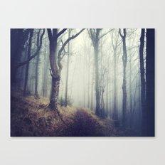 Fforest Canvas Print