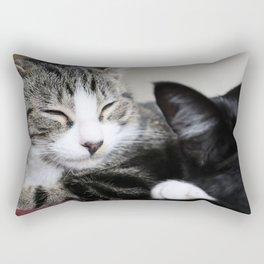 Kitty! Rectangular Pillow