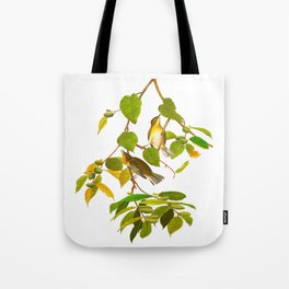 Autumnal Warbler James Audubon Vintage Scientific Illustration American Birds Tote Bag