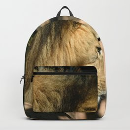 African Lion Backpack