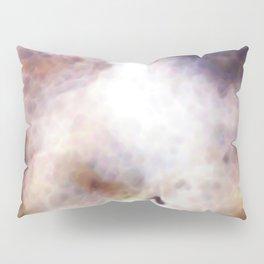 Moth 1 Pillow Sham