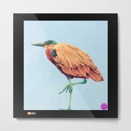 Heron II Metal Print