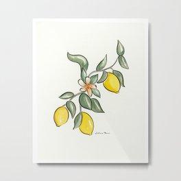 Lemon Branch Metal Print