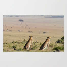 Two cheetahs on the look out Rug
