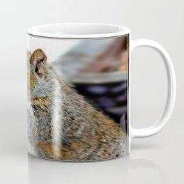 Bashful Curiosity Coffee Mug