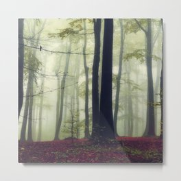 Towering Trees Metal Print