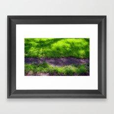 Shaded Grass Framed Art Print