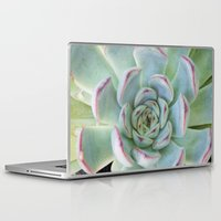 succulent Laptop & iPad Skins featuring Succulent by Tammy Franck