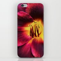 burgundy iPhone & iPod Skins featuring Burgundy Satin by hewnly