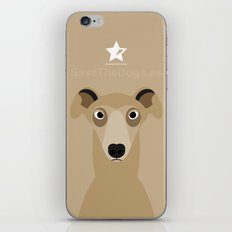 Greyhound (Galgo Ingles) iPhone & iPod Skin