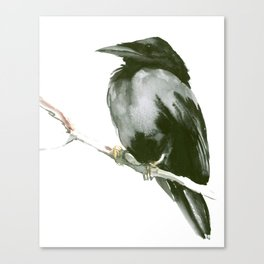 RAVEN on the tree Canvas Print