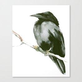 RAVEN on the tree Canvas Print