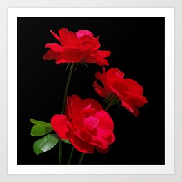 Red roses on black background Art Print