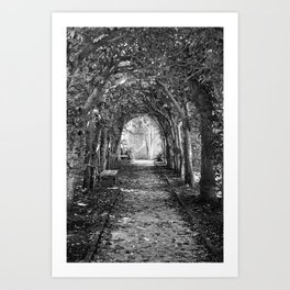 A Place to Rest Art Print