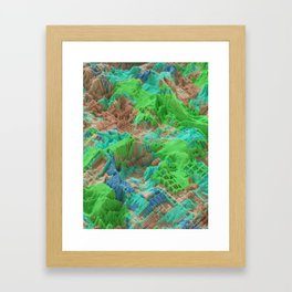 Biomes Framed Art Print