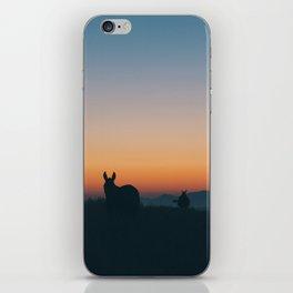Santorini Donkeys iPhone Skin