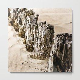 Nature #9 Metal Print