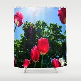 Skyward Tulips Shower Curtain
